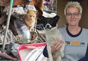 Jarmila Pávková již pět let žije svůj sen. Pomáhá zvířatům a lidem v nouzi.