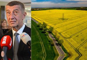 Andreje Babiše štvou údajné nepravdy o řepce a zloba na zemědělce