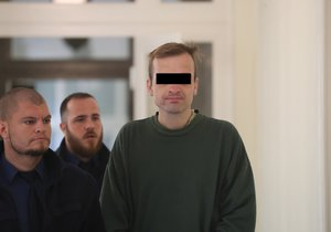 Bodl svou matku do oka: Za pokus o vraždu si muž odsedí 15 let