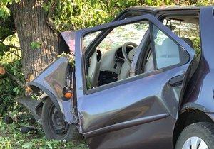 Vážná nehoda na Litoměřicku: Řidička a dvě děti těžce zraněny! Na místo vzlétly dva vrtulníky. (Ilustrační foto)