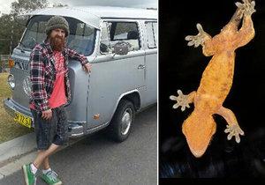 Muž snědl gekona a zemřel v agonii.