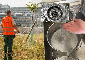 Má zachytávání vody ve dřezech a následné zalévání zeleně smysl?