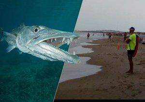 Na španělské pláži pokousala neznámá ryba dva malé chlapce. Spekuluje se o barakudě