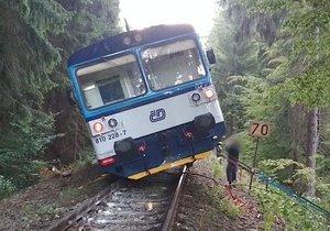 Děsivá nehoda u Nové Paky: Vlak narazil do stromu a celý vykolejil