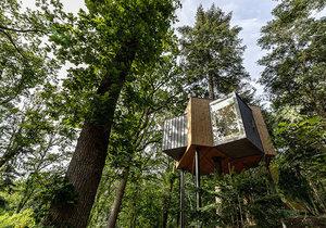 Působivé ubytování v koruně stromu