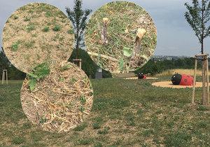 Posekal trávu u hřiště. Teď ho hledá policie, způsobil škodu 30 tisíc korun.