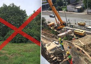 Developer čeká na povolení pokácet 113 stromů.
