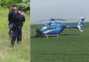 Po ztraceném muži, který vyhrožoval sebevraždou, pátraly desítky policistů, vzlétl vrtulník. Našli ho, jak sbírá houby. Ilustrační foto.
