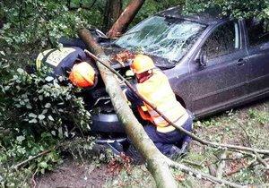 Tragická nehoda na Táborsku: Řidič zemřel po nárazu do stromu!