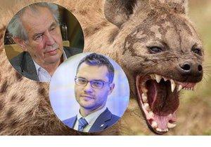 """Slova o hyenách rozlítila Polčáka. """"Zeman je vůdce smečky,"""" vypěnil europoslanec"""