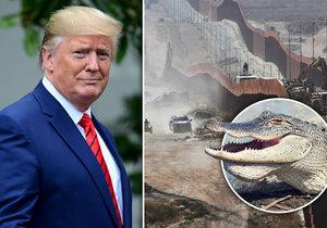 Trump chtěl ke zdi na hranicích přidat vodní příkop s aligátory.