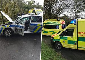 Policejní posádka narazila do stromu. Muž a žena utrpěli střední zranění.