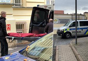 Vražda v psychiatrické léčebně Kosmonosy: Podezřelá pacientka (19) skončila ve vazbě