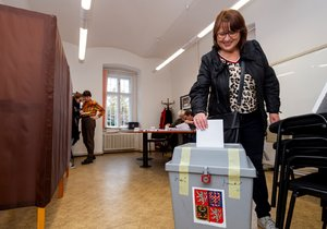 Lidé v Litoměřicích odmítli v referendu privatizaci místní nemocnice (8. 11. 2019)