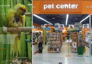 Síť zverimexů Pet Center čelí obvinění ze špatného zacházení se zvířaty.