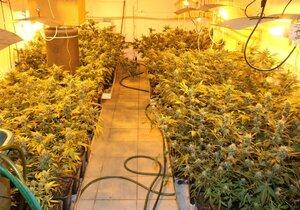 Vybrali drogové doupě: Trojice si z domku na Blanensku udělala plantáž konopí