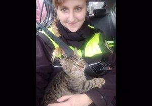 Brněnští strážníci zachránili kotě z protihlukové stěny.