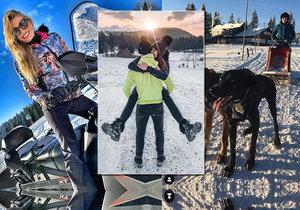 Krásky řádily na horách: Kostková krotila psy, Švantnerová přítele!