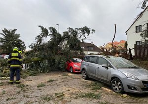 28. ledna spadl kvůli silnému větru na auta v Bohnicích strom. Hasiči řešili desítky případů.