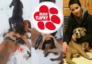 Odsouzená tyranka předhodila štěně psům a točila krvavá jatka. Skončí za mřížemi?
