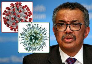 Koronavir je desetkrát smrtelnější než prasečí chřipka, varují experti.