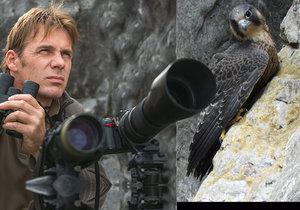 Dny trpělivého čekání: Amatérský ornitolog nafotil u Býčí skály mladé sokolíky