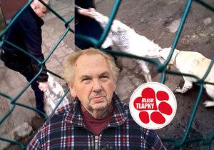 Boj se psy o kozlíka není trestný čin, rozhodli policisté. Případ řeší úřady.