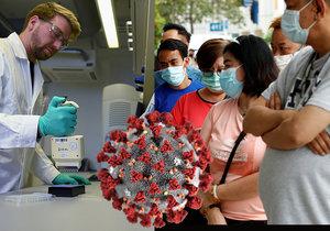 Koronavirus podle vědců postihuje nejvíce seniory, muže a černochy a Asiaty.