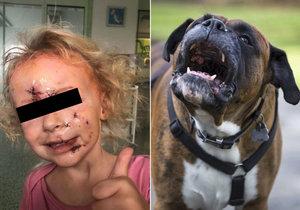 Holčičku (3) na Pardubicku brutálně pokousal pes: Rodina poslala dojemný vzkaz záchranářům