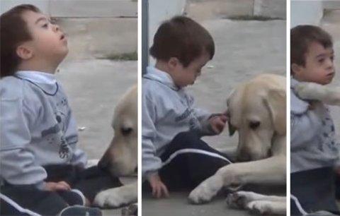 Nejoddanější psí kamarád a chlapec s Downovým syndromem dojali svět