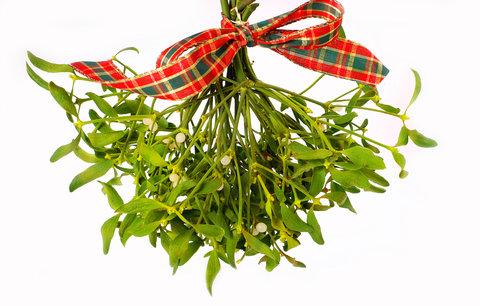 Znáte nejoblíbenější vánoční tradice? Jaké zvyky dodržujete vy?