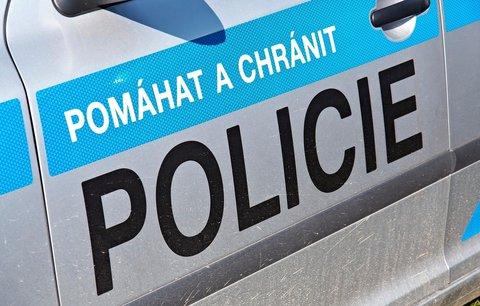 Na Ústecku se ze skály zřítila 12letá dívka: Pád šetří policie