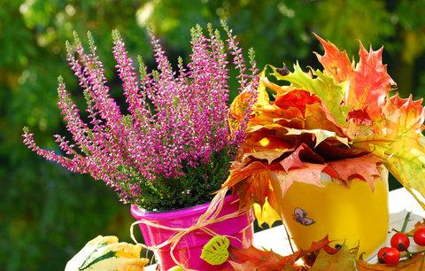 Říjen na zahradě: Na co všechno nesmíte zapomenout