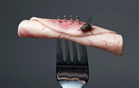 Otrávené jídlo zabije ročně statisíce lidí. Jen malých dětí umírá 125 tisíc