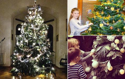 Horečka nejkrásnějších svátků v roce vrcholí: Které celebrity už rozsvítily vánoční stromek?
