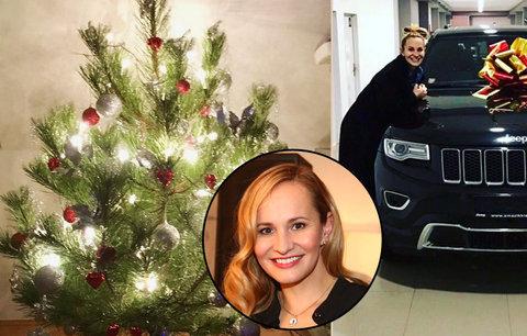 Absolonová už nazdobila stromeček, má první dárek – luxusní auto!