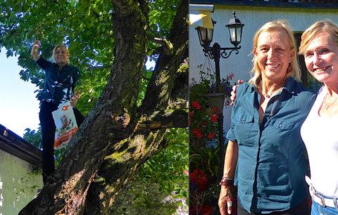 Z Wimbledonu do Řitky: Navrátilová trhala třešně u Vondráčkové