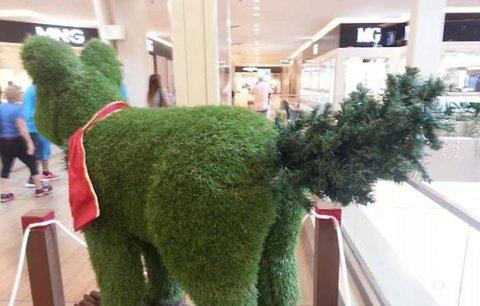 Lechtivé vánoční dekorace: Takhle to vypadá, když se výzdoba zvrhne!