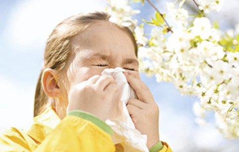 Alergií u dětí mírně ubylo, zato stoupl počet dětských astmatiků