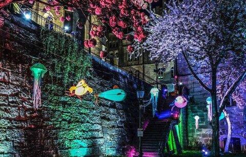 Festival světla rozbliká večerní Plzeň:  Nabídne pohled do lidského oka i pod hladinu moře