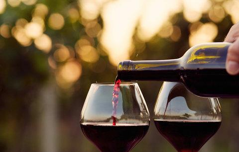 Vynikající víno a ničím nerušená pohoda? To zažijete na Pálavě!