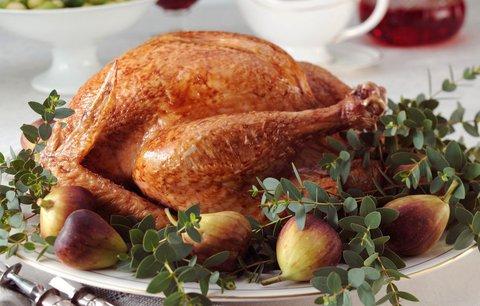 Vánoční pohroma: Z tradičního jídla se salmonelou nakazilo přes 200 lidí v USA