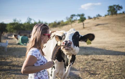 Českou biopotravinou roku je Kaštánkovo sušené vepřové maso
