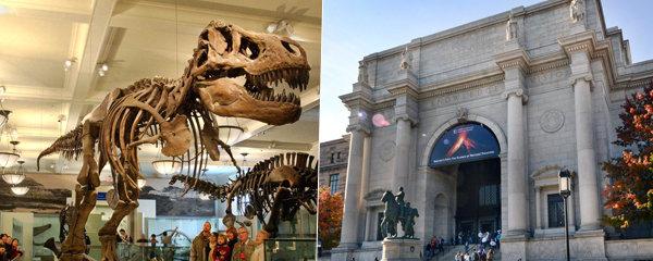 Dinosauři, meteority i drahokamy: Americké přírodovědné muzeum je tak velké, že jeden den nestačí