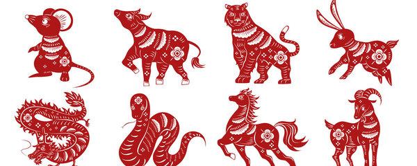 Horoskop na další týden: Krysy se zamilují na první pohled, Tygři budou kreativní
