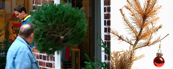 Tři králové jsou za dveřmi, stromek musí z domu! 4 elegantní způsoby, jak se ho zbavit