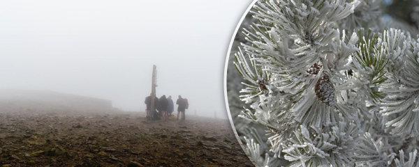 Svatý Martin napoví, jaká čeká Česko zima. Meteoroložka má dobrou zprávu