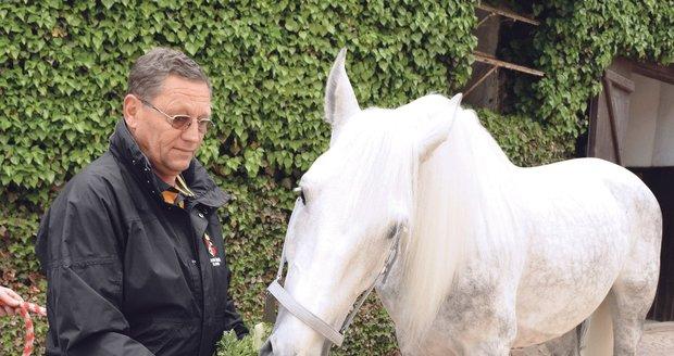 Blesk předal náměstkovi ředitele hřebčína Petru Vozábovi ošatku s koňskými pochoutkami pro oslavence.
