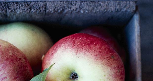 Pokud chcete jablka uskladnit, stejně jako další ovoce je trhejte i se stopkami, déle vydrží