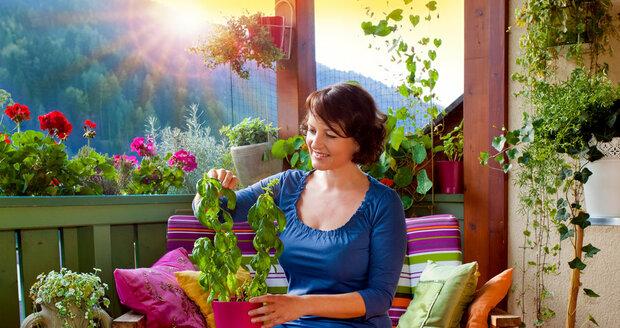 Udělejte si z balkonu či terasy zelenou oázu, kde načerpáte energii.